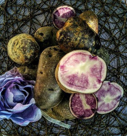 patateviola1